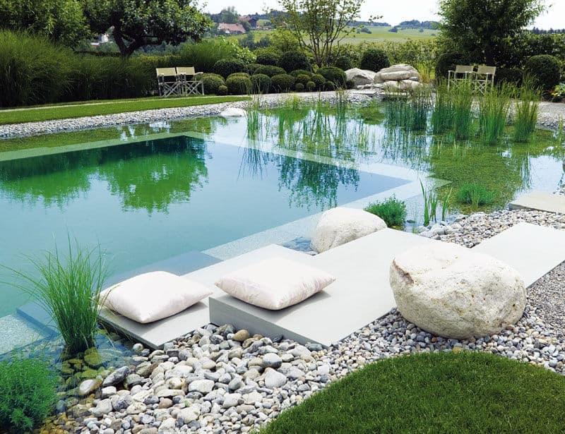 Baignade piscine naturelle